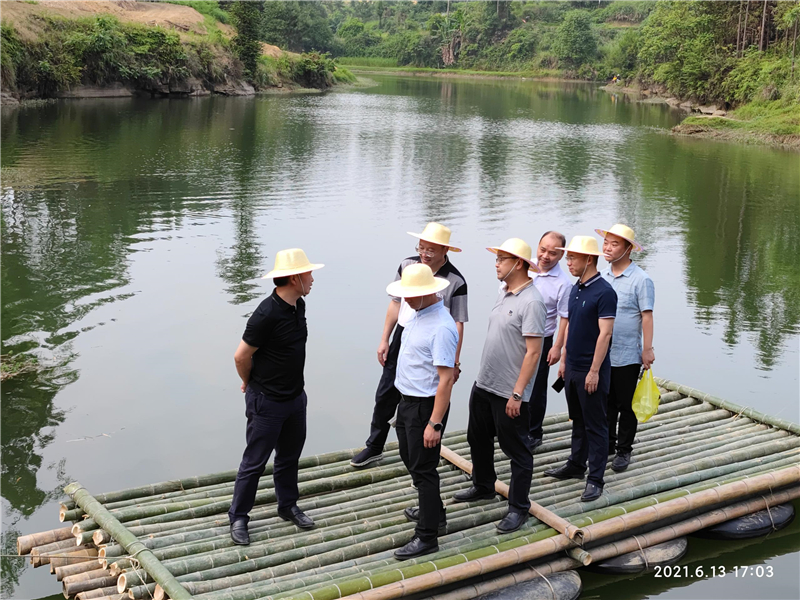 集团公司王劲董事长视察穹窿植物园建设现场